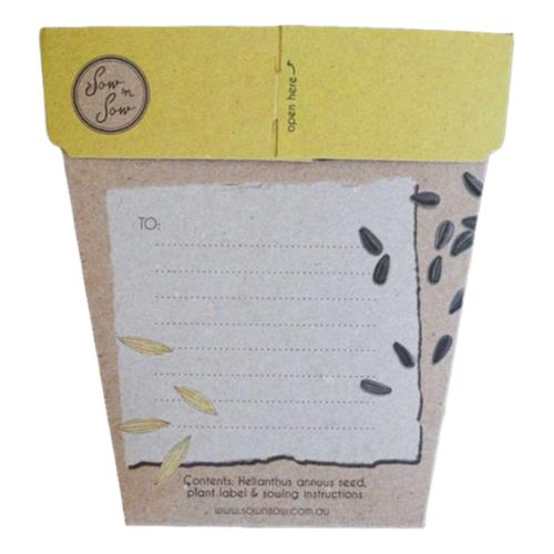 Sow 'N Sow – Gifts of Seed Sunflower