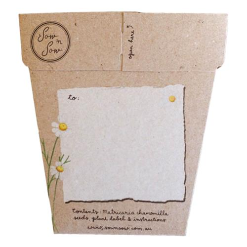 Sow 'N Sow – Gift of Seeds Chamomile