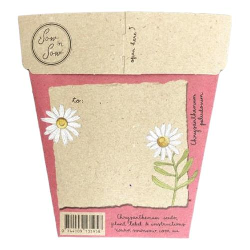 Sow 'N Sow – Gift of Seeds Mothers Day Chrysanthemum